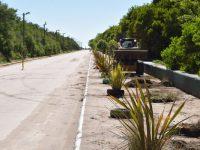 PUERTO QUEQUÉN: Ordenamiento del tránsito en la Escollera Sur