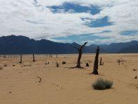 ECOLOGÍA: El cambio climático es letal para el agua subterránea