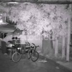 POLICIALES: Entre Monitoreo y la policía impidió un robo en 70 y 71
