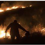 MÉXICO: Una reserva tropical arde en un incendio