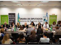 PROVINCIA: Acceso a la justicia por violencia de género