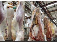 ECONOMÍA: La carne no bajará sus precios