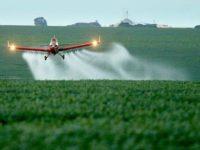 BRASIL: Cada vez más más agro-tóxicos