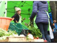 NECOCHEA: Toda la calidad de los productores locales en el Barrio 9 de Julio