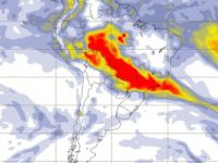 BRASIL: Los incendios en el Amazonas aumentan un 82%