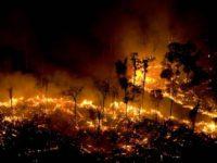 BRASIL: Arde el Amazonas y pone en jaque a Bolsonaro