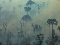 AMAZONIA: Brasil rechaza los 18 millones de euros del G7