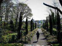 París y otras cuatro ciudades de Francia prohíben el uso de pesticidas