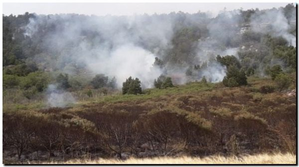 Incendio forestal en Sierra de Los Padres