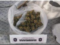 Venían a Necochea con flores de marihuana