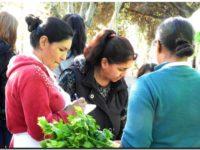 Vuelve El Mercado en tu Barrio a Necochea