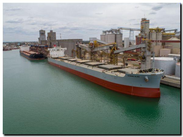 Los principales puertos del país encuentran operativos y sin casos de coronavirus en trabajadores