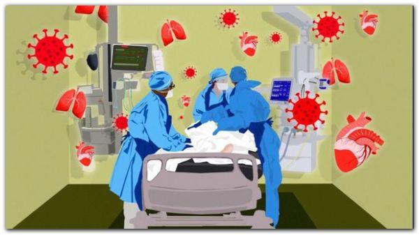 Coronavirus | De enfermedad respiratoria a multisistémica