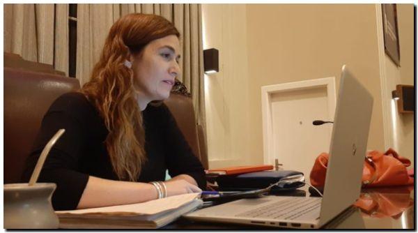 CASINO: Presentaron proyecto de interés nacional