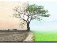 CAMBIO CLIMÁTICO: Enfermedades infecciosas