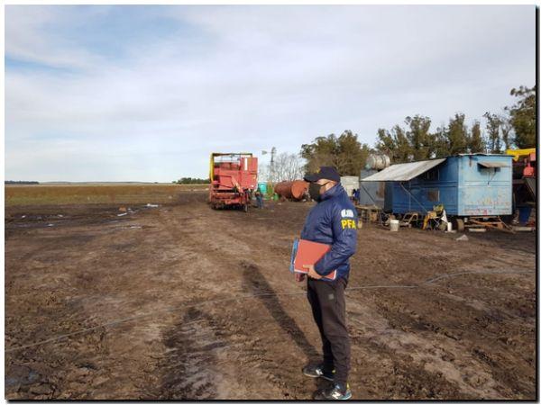 Trabajadores rurales explotados en un campo de Necochea