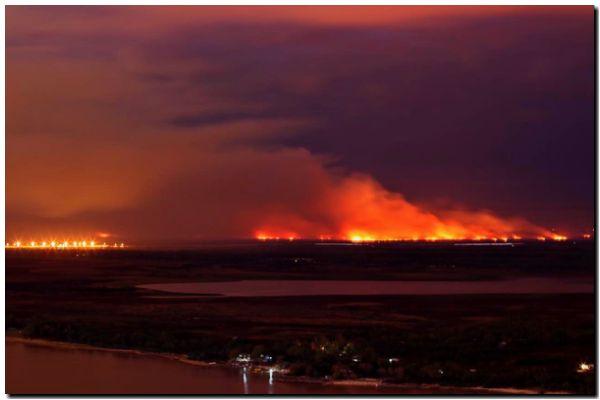 PEDIDO: Incendios en el Delta