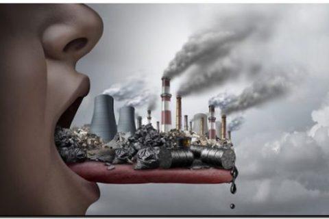 ECOLOGÍA: Intoxicación por plomo